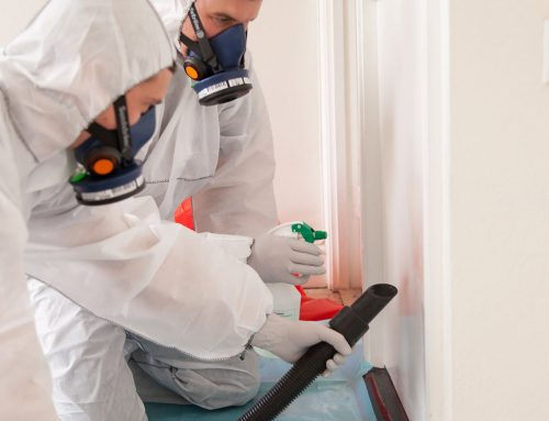 Asbestos in Homes – A Homeowner's Guide to Asbestos and What to Do