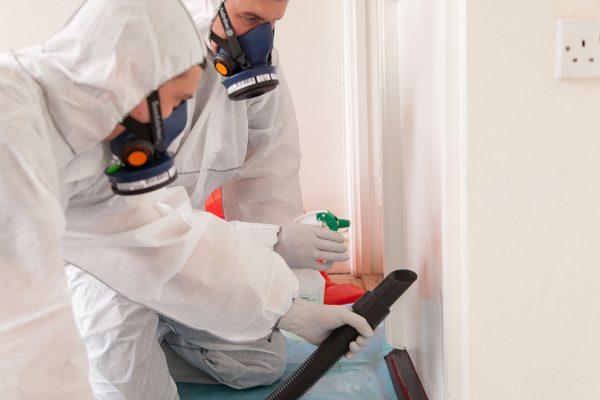 Asbestos Surveying