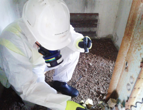 Asbestos Testing – The Ultimate Guide to Asbestos Testing